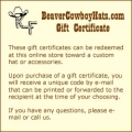 $250.00 Gift Certificate - Product Image